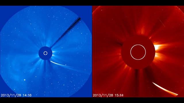 Comet ISON Dives Toward the Sun (SOHO LASCO images)